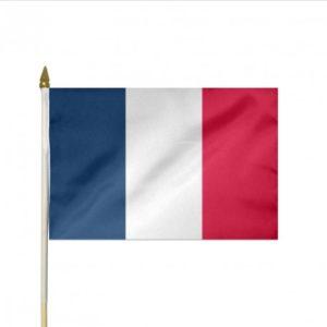 Drapeau France à agiter en tissu (30x45cm)